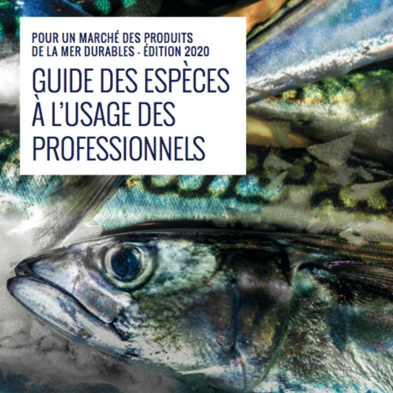 Guide des espèces produits de la mer | Ethic Ocean